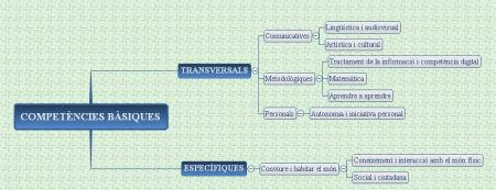 competencies-basiques_1.jpg